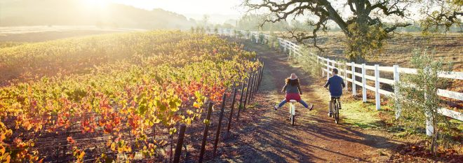 Mobile: couple riding bikes in vineyard