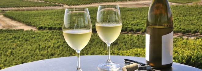 Mobile: Wine in Napa Valley Vineyards